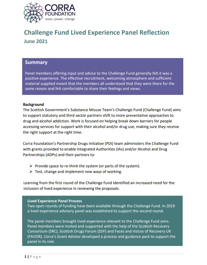 Challenge Fund lived experience panel reflection